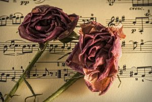 9 Things You Didn't Know About Für Elise